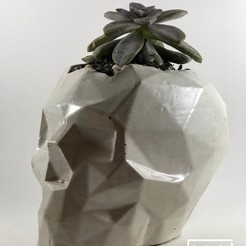 3D print model POLYGONAL SKULL POT | MODEL 05, MA-DisenosCreativos