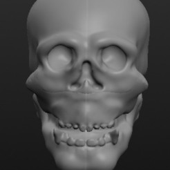Download free STL Skull thing, Bolrod