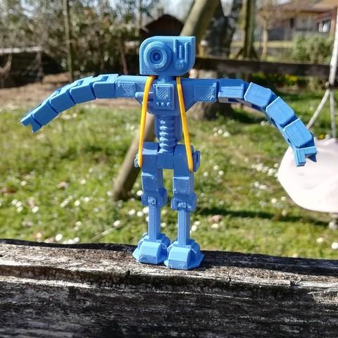 3D printing model Rob_1, 3Dextrusion