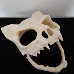 Foto1.png Download STL file Skull Mask - Feline/Cat • 3D printing model, jorgeuliana