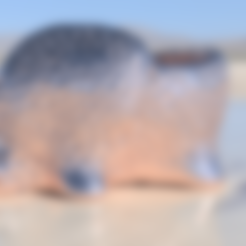 Free 3D print files Elephant dryer (closed voronoi), IdeaLab