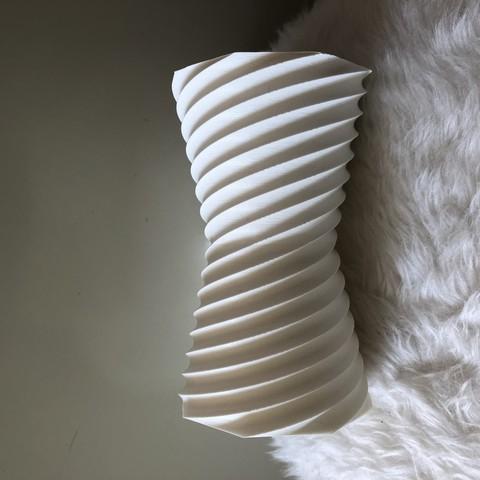 IMG_1107.jpg Download free STL file Reversible vase • 3D printer design, IdeaLab
