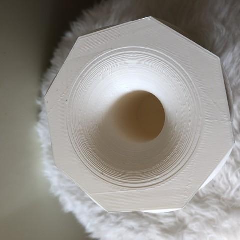 IMG_1108.jpg Download free STL file Reversible vase • 3D printer design, IdeaLab