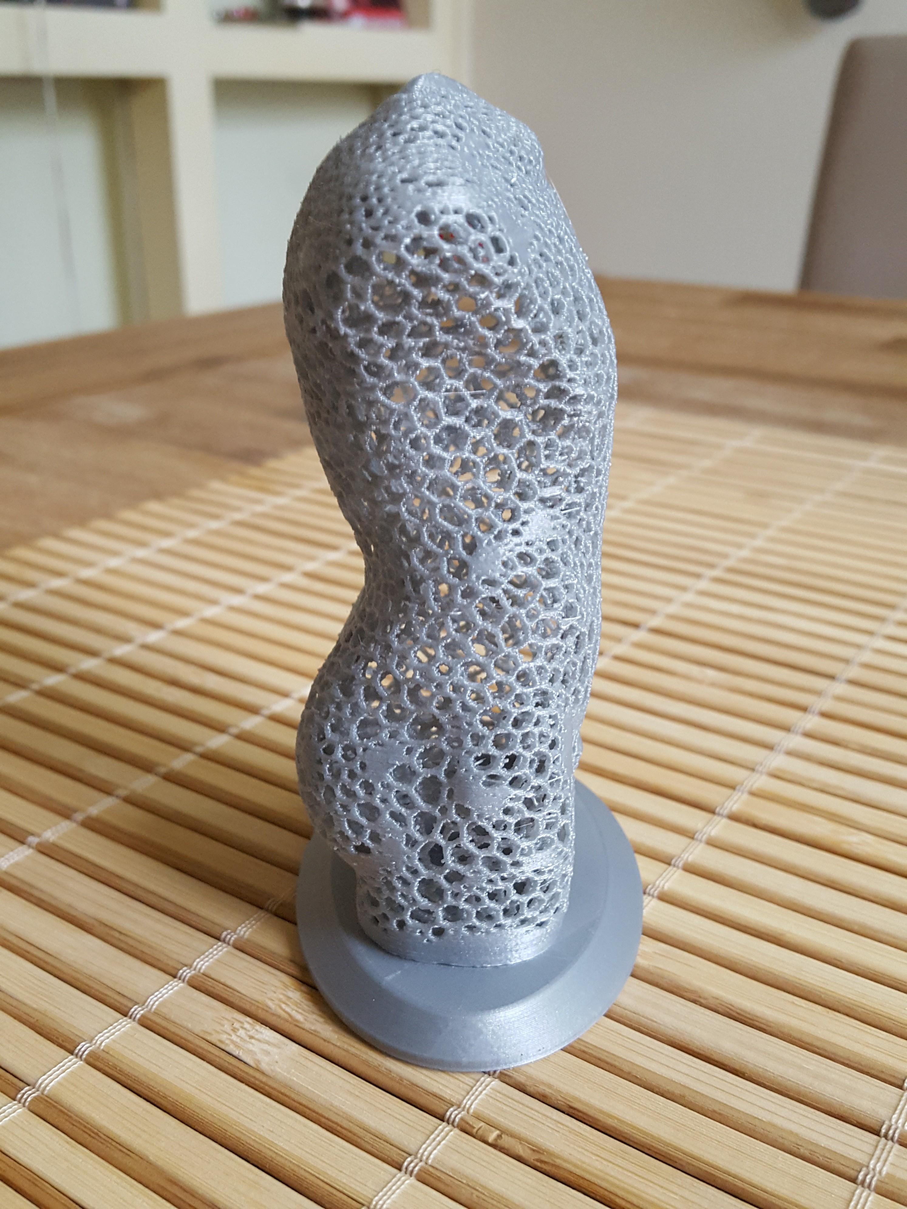 20180923_125202.jpg Télécharger fichier STL gratuit Torse masculin Voronoi • Design pour imprimante 3D, IdeaLab