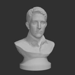 Descargar archivos 3D gratis Snowden para una impresión más fácil, Yipcott