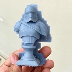 STL Modelo de impresión en 3D de Captain Phasma Bust Fan Art, seberdra