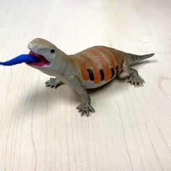 Télécharger plan imprimante 3D gatuit Peau Bleue Tangue Peau Bleue, auralgasm