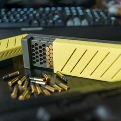 Descargar archivos STL Caja de munición del Max's 100 redonda calibre.22 LR, MizzrBear