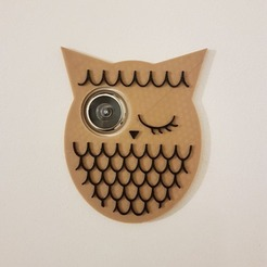 Free 3D printer files Owl - eyelet / door viewer, nicotintin35