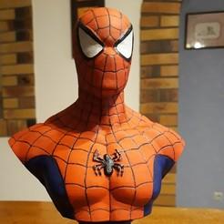 Télécharger STL gratuit Buste Spiderman , azedjo