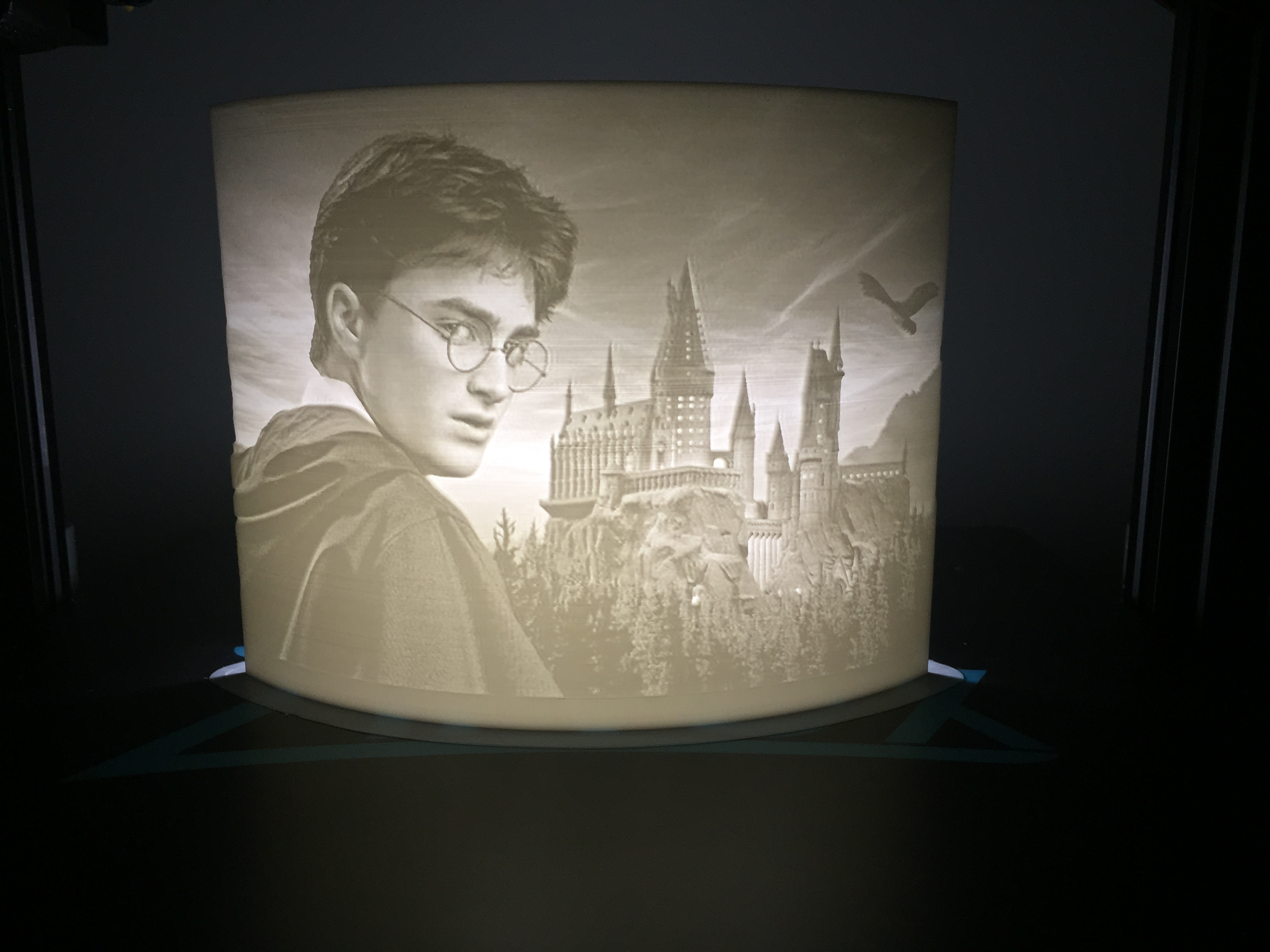 IMG_5276.JPG Download free STL file Lithophanie Harry Potter • 3D printer model, laurentpruvot59