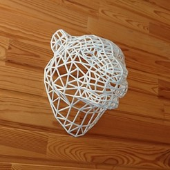 3D printer models WireFrame Tiger Head, David3D