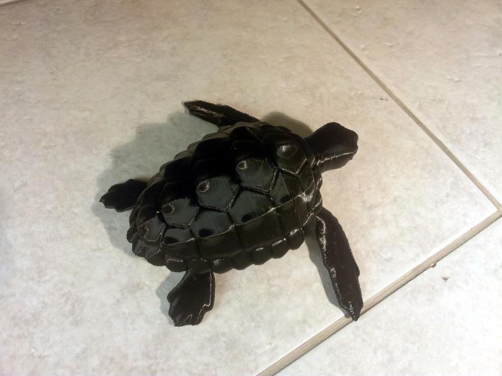thingiverse_2_display_large.jpg Download free STL file Loggerhead Sea Turtle (poseable) • 3D printer template, Ogubal3D