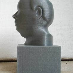 Download free 3D printing templates PlaneModeling of a friends Head, Minweth