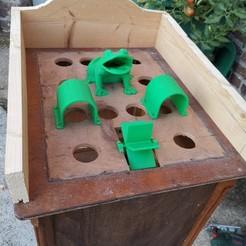 IMG_20200817_204406.jpg Download STL file Frog Game • 3D printable design, sdawn