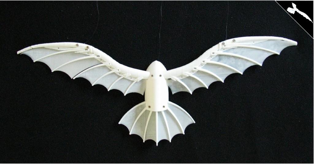 DaVinci_slike_Model_7_display_large.jpg Télécharger fichier STL gratuit Le cerf-volant de DaVinci • Plan pour imprimante 3D, Beardoric