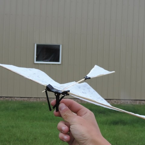 DSCN3910_display_large.JPG Download free STL file Ornithopter • 3D printing model, Beardoric
