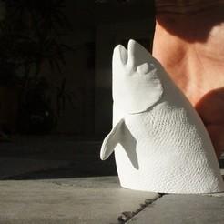 Free 3D printer files Salmon fish, Beardoric