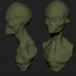 Descargar diseños 3D gratis Alien , arkam