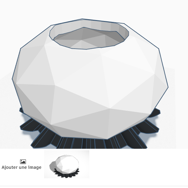 Terrific Bombul _ Tinkercad - Google Chrome 11_04_2020 14_34_45.png Download free STL file vase • 3D printer template, billy-and-co