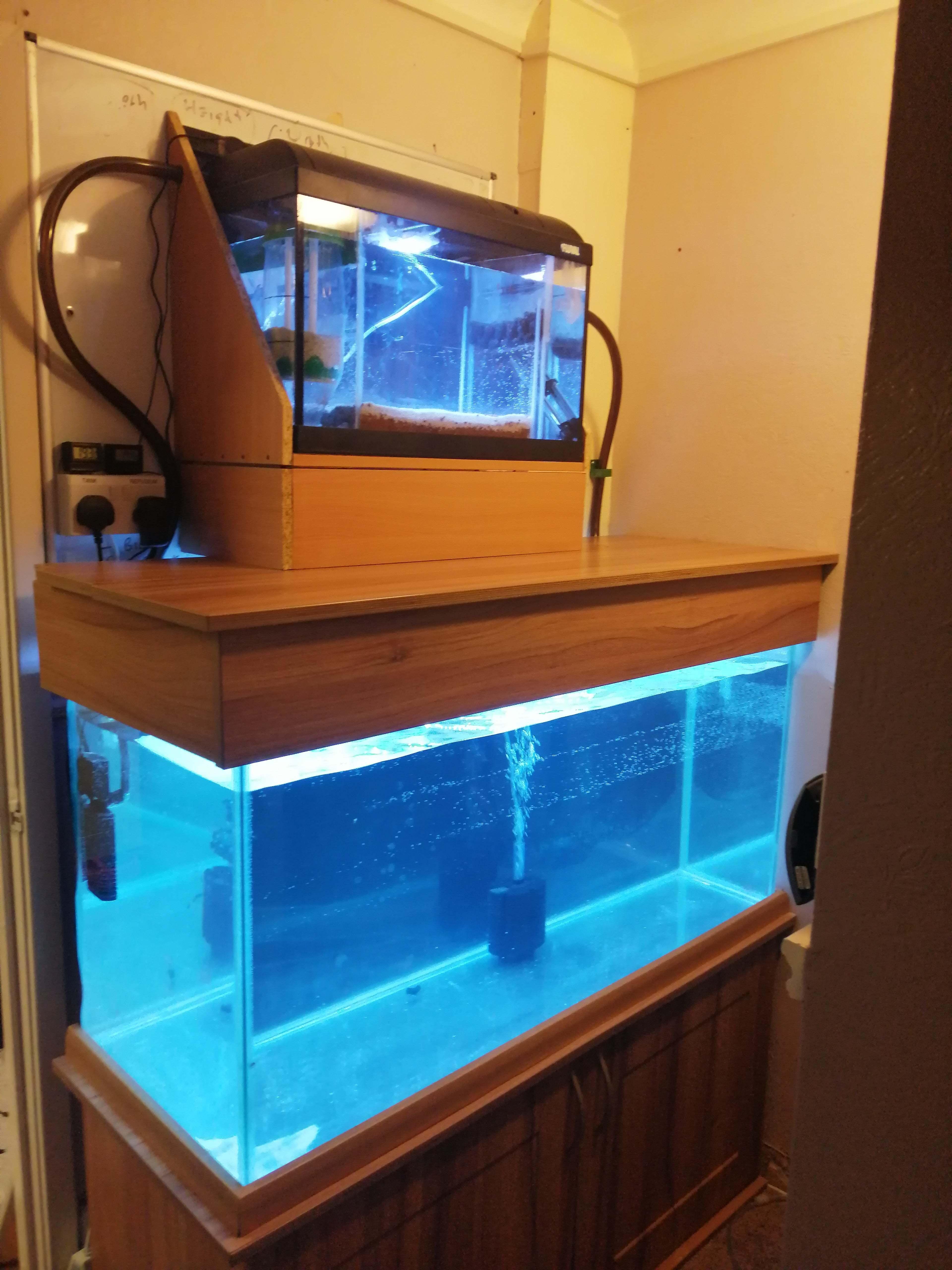 IMG_20200502_022903.jpg Download free STL file Aquarium Sand reactor • 3D printable model, simonlewis962