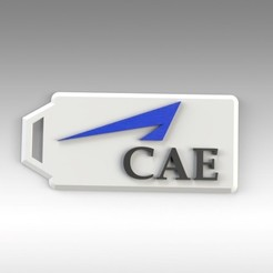 CAE KEYCHAIN 3.jpg Download free STL file CAE KEYCHAIN • 3D printer model, Trikonics