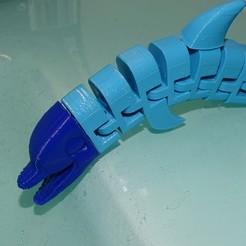 Télécharger fichier STL gratuit Dauphin Flexi • Modèle pour imprimante 3D, enguerrand