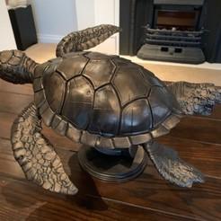 Imprimir en 3D Tortuga, rick5