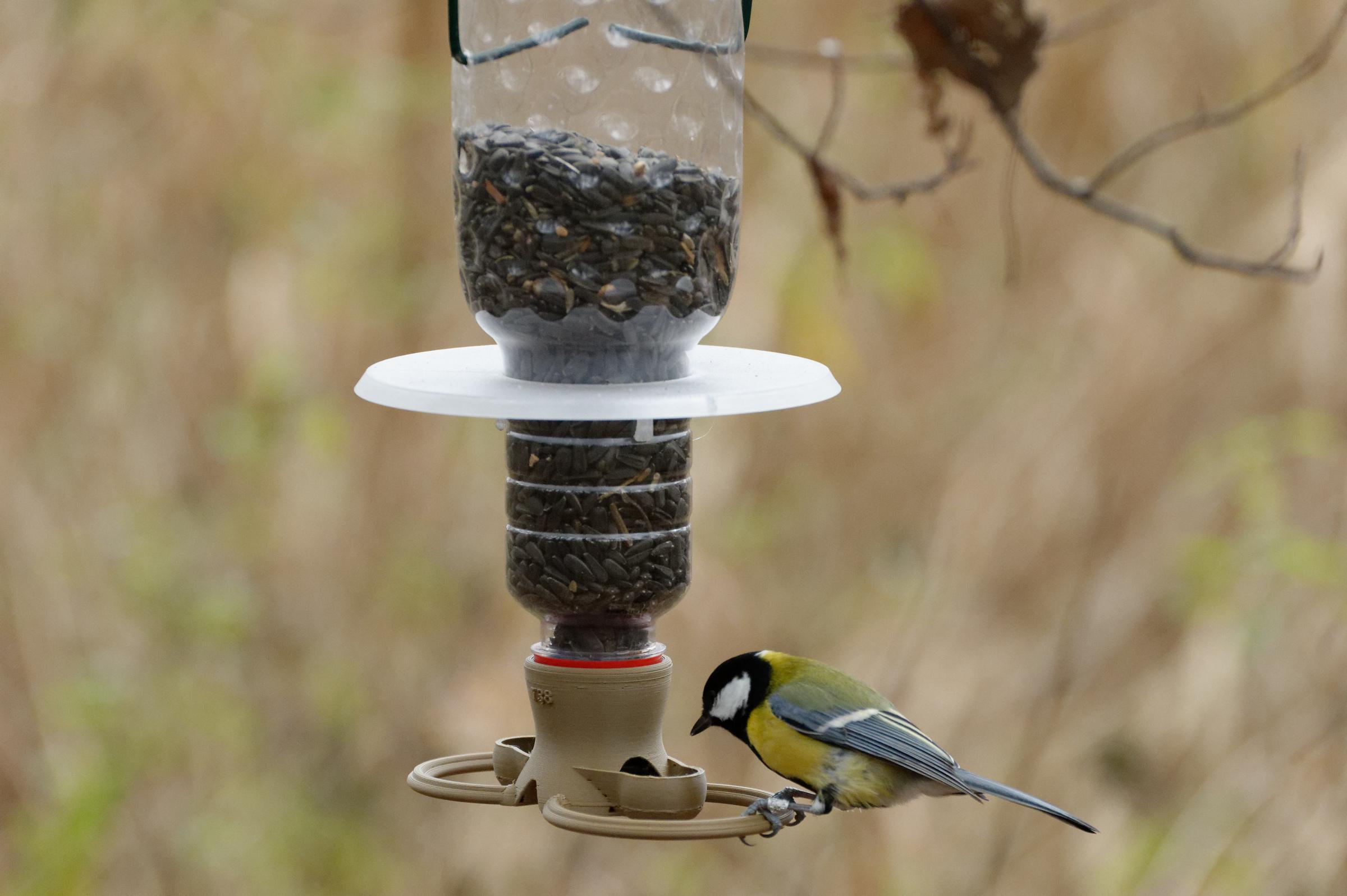 J_201110_124418_DxO.jpg Download 3MF file Bird feeder T38 to mount on PET bottle • 3D printable template, jirkabr