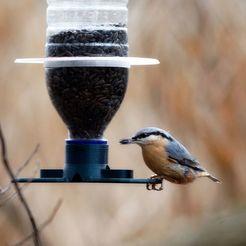 brhlik3CC.JPG Download free STL file S38 Bird feeder on a PET bottle • 3D printing design, jirkabr