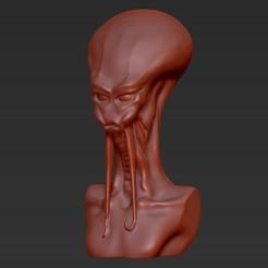 DW_Alien_Bust_display_large.jpg Télécharger fichier STL gratuit Buste d'extraterrestre • Modèle imprimable en 3D, Fayeya