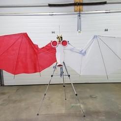 Download free 3D model Wing Cosplay Framework, Fayeya
