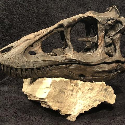 Descargar diseños 3D Esqueleto T-rex de bebé de tamaño natural - Parte 01/10, tonygagler