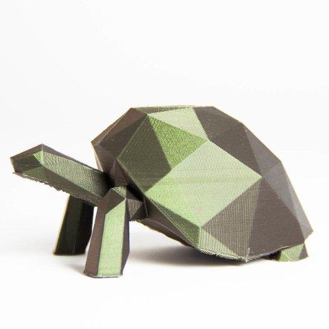Download free 3D printing models LowPolyTurtle, Digitang3D