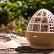 Télécharger fichier imprimante 3D Mangeoire d'oiseaux glands, Digitang3D
