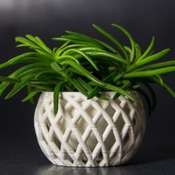 Free 3D print files Planter, Digitang3D