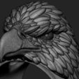STL file Eagle vol2 ring, anshu3dartist