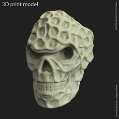 Download 3D printing designs Biker skull vol15 ring, anshu3dartist