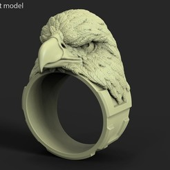 Download 3D printer model Eagle vol1 ring, anshu3dartist