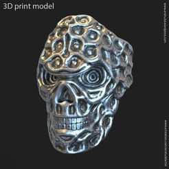 BS_vol15_k2.jpg Download STL file Biker skull vol15 ring • 3D print object, AS_3d_art