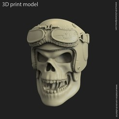 3D print model Biker helmet skull vol14 ring, anshu3dartist