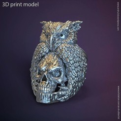 Download 3D printing templates SKull and owl vol1 ring, AS_3d_art