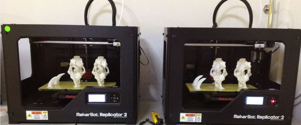 2_display_large.jpg Download free STL file MiniSaberToothSkull_Fix_Support • Design to 3D print, Pwenyrr