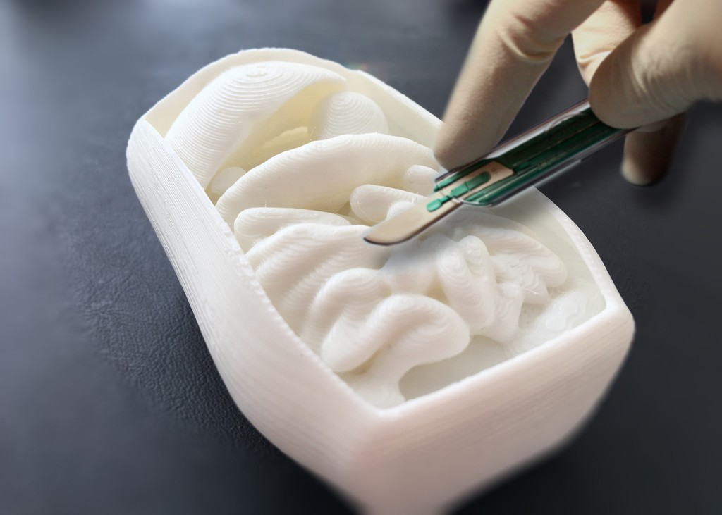 dcbdfd74dbc950128110851f2a8689c2_display_large.jpg Télécharger fichier STL gratuit Corporeal - Un projet de dissection humaine • Modèle pour impression 3D, Pwenyrr