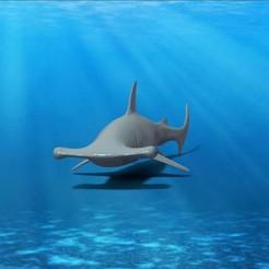tiburon martillo 1 Jpg.jpg Download OBJ file Hammerhead Shark • 3D printer model, Llopis_3D