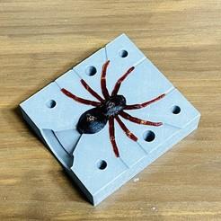 IMG_E1460.JPG Download STL file Spider fishing lure mold • 3D printable model, Strangebait