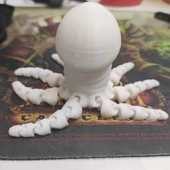 Download STL file Octopus Dick AKA OctoDick • 3D printable template, Rolrik