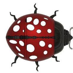 3a69ed69a6f6fa68ccb089439a0dcb64_preview_featured.JPG Download STL file ladybird decoration • Object to 3D print, davlebon