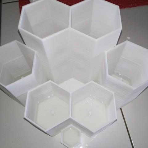 34596b5f18bae0d3fba5149749bd8228_display_large.jpg Télécharger fichier STL gratuit Pot à cactus avec réserve d'eau • Modèle pour imprimante 3D, Aliasze13