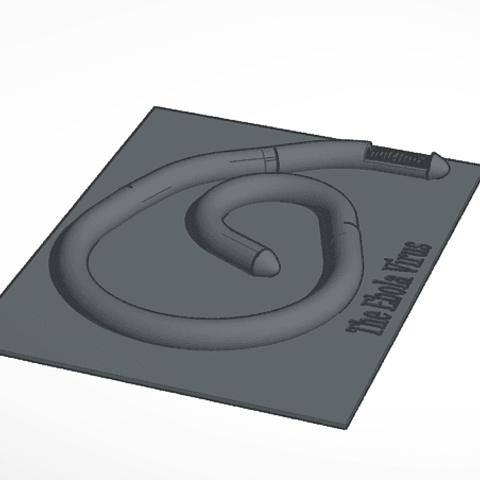 3D print model The Ebola Virus, soaringbear00678